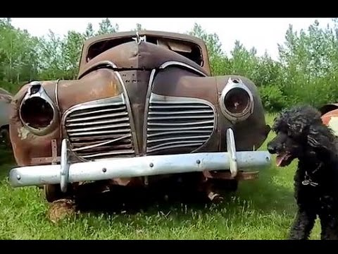 Saved From The Crusher: 1941 Plymouth 2 Door!