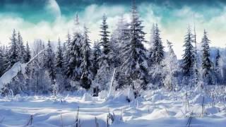 Winter - Ryan Farish