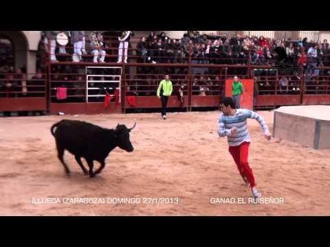 ILLUECA Zaragoza) (SOLO RECORTES)  DOMINGO 27 ENERO 2013 (EL RUISEÑOR)