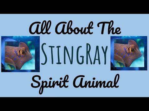 🌹🌙 THE STING RAY SPIRIT🌙🌹Sting Ray Spirit Animal Symbolism