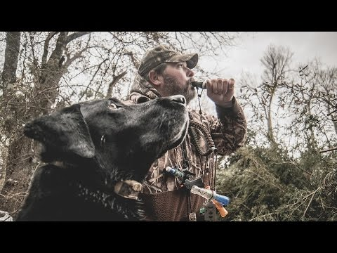A Man, His Dog, And A Duck Hunting Hole - Fowled Reality