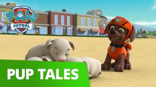 PAW Patrol | Pups Save The Yoga Goats | Rescue Episode | PAW Patrol Official & Friends