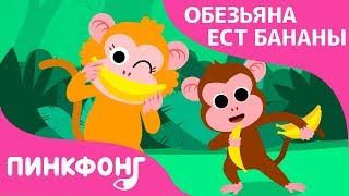 Обезьяна ест Бананы   Песни про Животных   Пинкфонг Песни для Детей