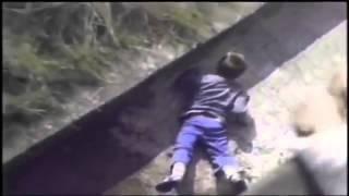 Ребенок упал в вольер к гориллам. Слабонервным не смотреть!