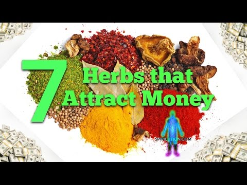 Attract Money Fast: 7 Herbs That Attract Money Fast!
