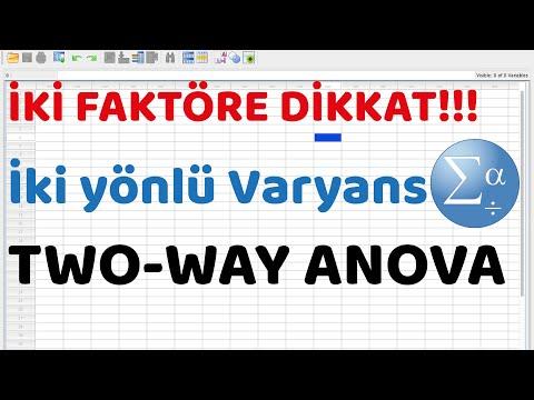 20-spss-programinda-iki-yonlu-anova-analizi-two-way-anova-test
