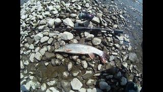 Рыбалка на реке шилке