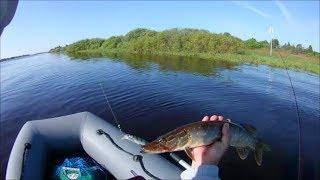 Рыбалка на реке волхов 2019