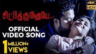 Alya Manasa  Sanjeev's HOT Romantic Video Song | Chittu Kuruviye Musical Video