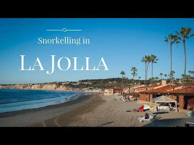Snorkeling in La Jolla Beach