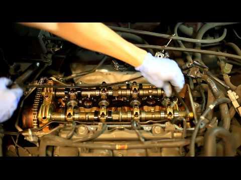 Das Öl und das Benzin für trimmera shtil
