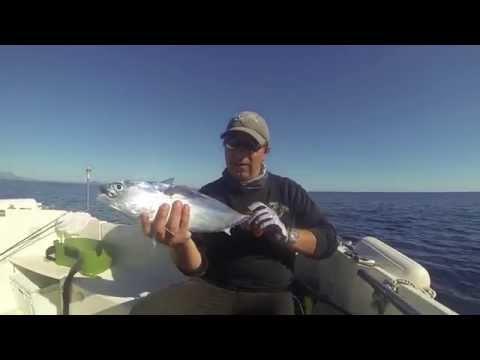 Méditerranée Fly Fishing Trip
