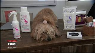 The Origin of Kibble Pet Organic Dog-Grooming Products