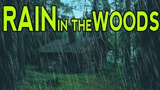 🎧 RAIN SOUNDS IN THE WOODS | Ambient Noise For Sleep, Relaxation and Studying | @Ultizzz day#9