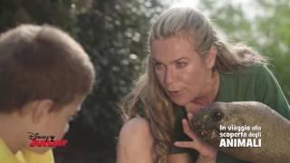 Disney Junior - In Viaggio Alla Scoperta degli Animali - Testuggini