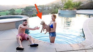 TRYING TO TEACH MY PUPPY HOW TO SWIM!!
