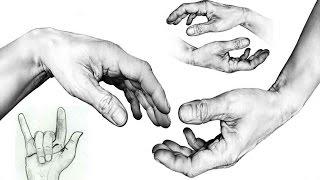 Смотреть онлайн Урок рисования карандашом кисти рук