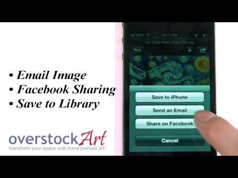 Video of overstockArt.com Oil Paintings