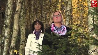 Video Lakomá Barka - Lípa