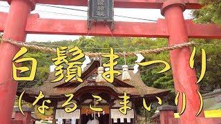 白鬚まつり(なるこまいり)と白鬚神社の見どころ【びわ湖源流の郷・高島市より】