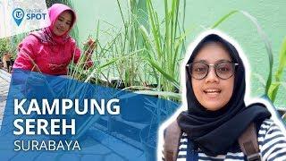 Wiki On The Spot - Kampung Sereh, Kampung Wisata Hasil Kreativitas Mahasiswa KKN di Surabaya