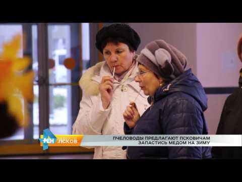 Новости Псков 15.11.2016 # Пчеловоды предлагают псковичам запастись медом на зиму