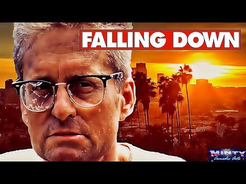 10 Things You Didn't Know About FallingDown