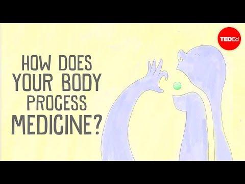 Jak vaše tělo odbourává léčiva? - TedEd