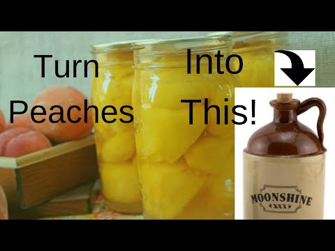 How To Make Easy Homeade Peach Moonshine ( brandy ) Mash or Peach Wine Recipe Homemade
