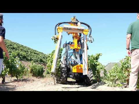 Dias na Vinha 2 - Mecanização e Robotização para vinhas de encosta | 15 de julho de 2021