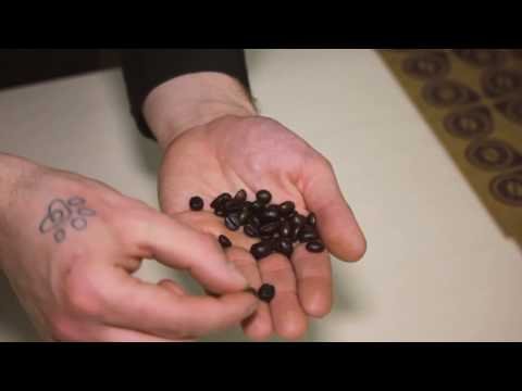 Caffè macinati aromatizzati: Insieme sui sentieri del gusto