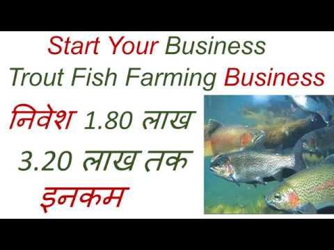 , title : 'Trout Fish Farming Business- निवेश 1.80 लाख & 3.20 लाख तक इनकम