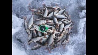 Рыбалка в ястребовке калужской области 2020