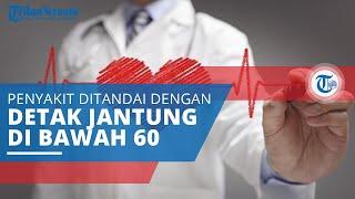Mengenal Bradikardia, Penyakit yang Ditandai Jumlah Denyut Jantung di Bawah Normal