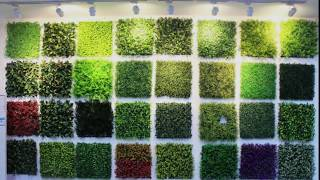 Artificial wall plants supply for imports, wholesale & retail