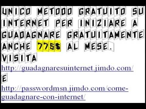 Fare soldi su Internet con il programma 1c