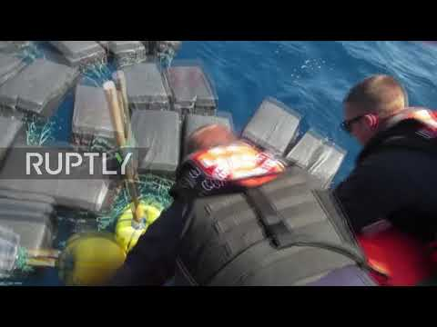 Shell shocked! Turtle rescued from HUGE 800kg, $53m cocaine haul