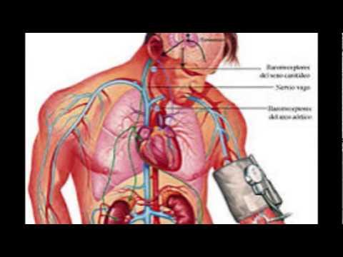 Elevar la presión arterial en el hogar