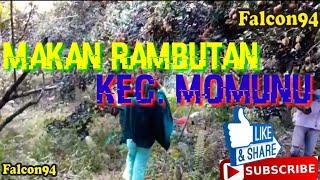 preview picture of video 'Liburan Makan Rambutan'