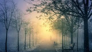 Melodic Progressive House mix Vol 40 (Winter Dream)