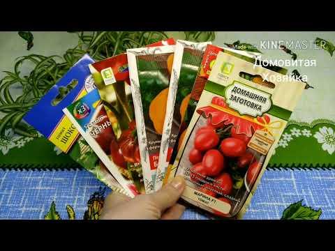 🍅Семена томатов 2020/помидоры для дачи/обзор/ сорта и гибриды/хит продаж #ДомовитаяХозяйка