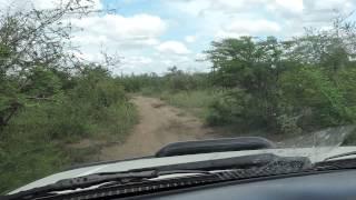 Traveling to IPHC Church near Lunga Lunga, Kenya