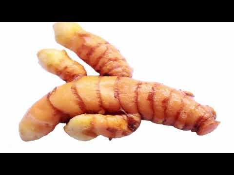 Quelles analyses il faut remettre pour la révélation des parasites dans lorganisme