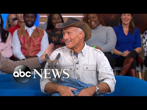 Sample video for Jack Hanna