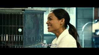 Mr. ズーキーパーの婚活動物園 - 予告編 - YouTube
