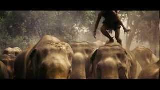 Video Tony Jaa Runs on Elephants MP3, 3GP, MP4, WEBM, AVI, FLV Agustus 2019
