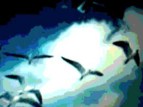 Cocteau Twins -  Wolf in the Breast