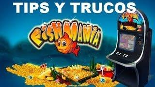 FISHMANIA TIPS Y TRUCOS PARA BINGO ELECTRONICO CASINOS GANALES