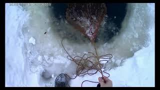 Фитиль снасть для ловли рыбы