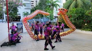 Singapore Teng Ghee 2019 Dragon Dance Performance Chinese New Year Celebration Day15